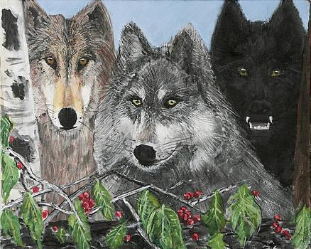 Charlie Harris - Wolf Pack