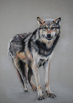 Wolf Standing by Tanya Patey