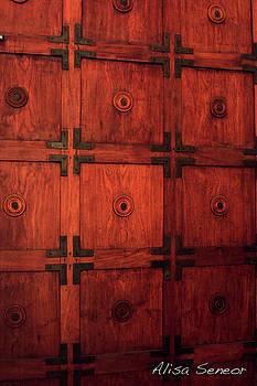 Wood Door A by Alisa Seneor