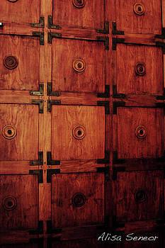 Wood Door by Alisa Seneor