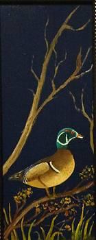 Wood Duck by Al  Johannessen