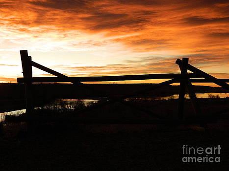 Wood Fence Sunrise by Sara  Mayer