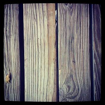 Wood by Safa Al-Rubaye