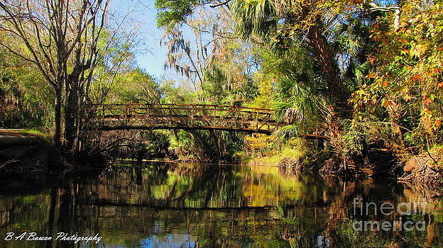 Barbara Bowen - Wooden Bridge over the Hillsborough River
