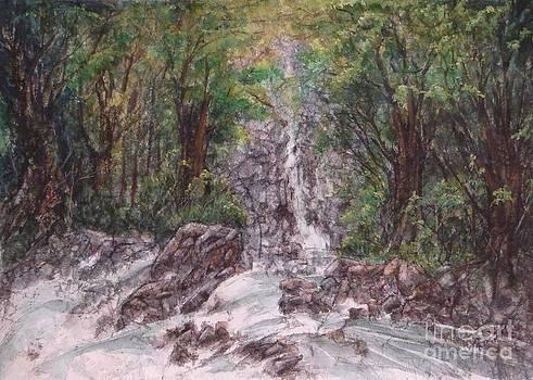 Woodland Falls by Ronald Tseng