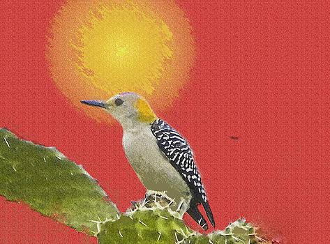 Woodpecker by Jesus Nicolas Castanon