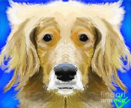 Woof by Dakota Eichenberg