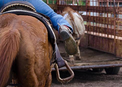 Working Cowboy by Lisa Moore