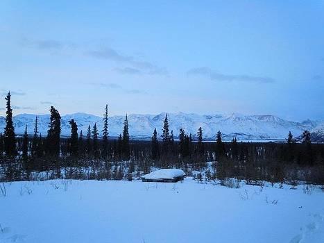 Wrangel Mountains by Amy Bradley