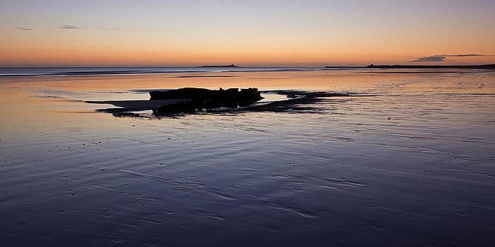 David Pringle - Wreck of the Hanseat