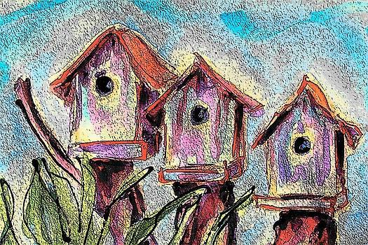 Wren's Row by Judy  Rogan