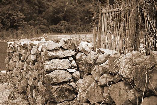 Harvey Barrison - Yangdi - an old fence