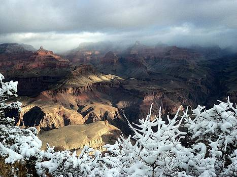 Yavapai Point 7 by Carrie Putz