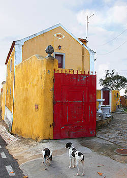 Nathan Mccreery - Yellow Building and Red Door with Dogs