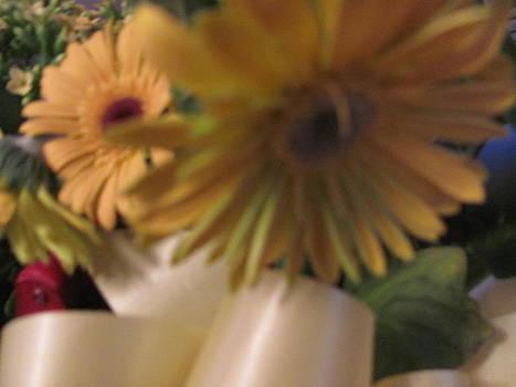 Yellow Country Valentine by Amy Bradley