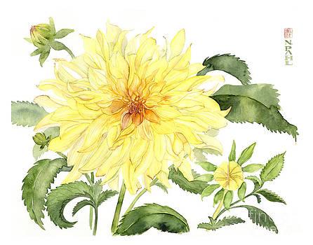 Yellow Dahlia by Nancy Pahl