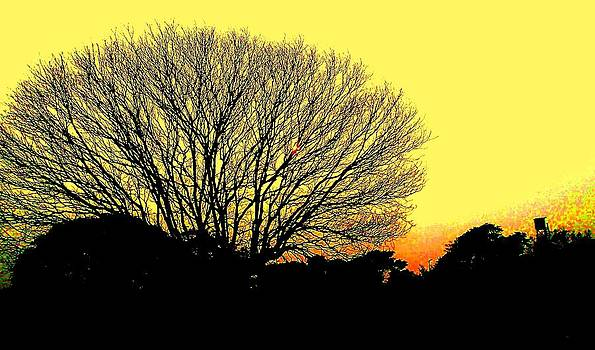 Yellow Evening by Sachin Manawaria