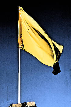 Kantilal Patel - Yellow Flag Vtwo