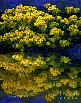 Dale   Ford - Yellow Flowers Reflected