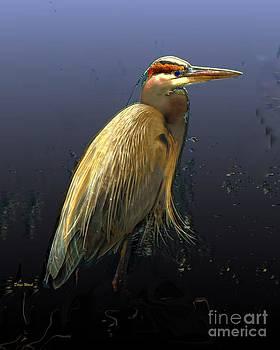 Yellow Heron by Doris Wood