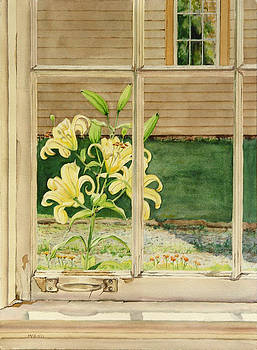 Yellow Lillies by Mark McKain