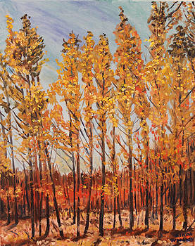 Yellow Poplars by Linda Woolven