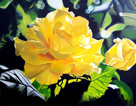 Yellow Roses by Donna Francis