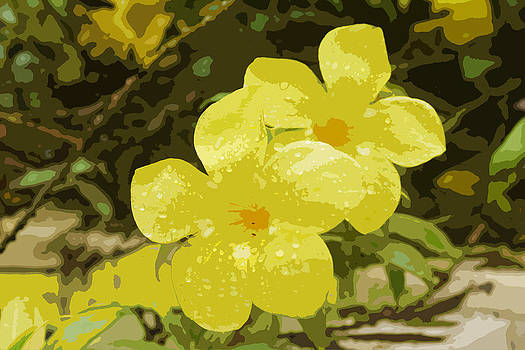 Kantilal Patel - Yellow Silks Rain Dance