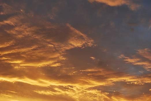 Michelle Cruz - Yellow Skies