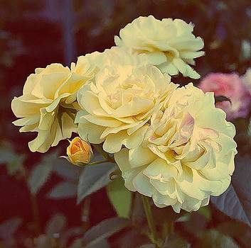Yellow Sunshine by Cathie Tyler