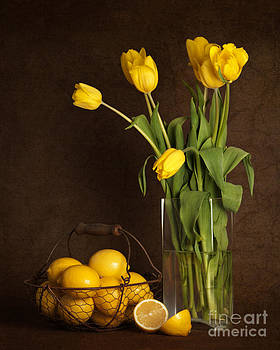 Yellow Tulips and Lemons by Heather Swan