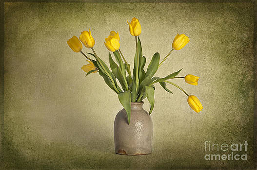 Yellow Tulips in Clay Pot by Heather Swan