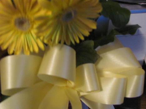 Yellow Valentine by Amy Bradley