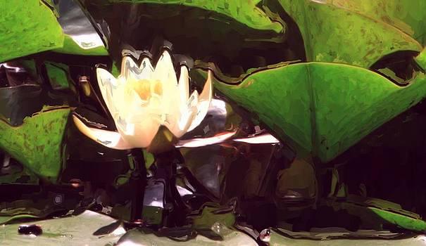 Gilbert Artiaga - Yellow Water Lily