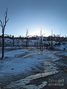 Gregory Dyer - Yellowstone National Park - Minerva Terrace - 01