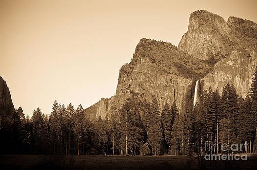 Yosemite in sepia by Leaetta Mitchell