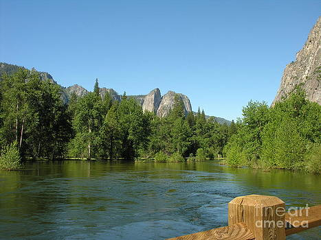 Yosemite National Park by Diane Greco-Lesser