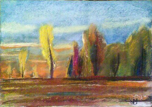 Young Fall by Vaidos Mihai