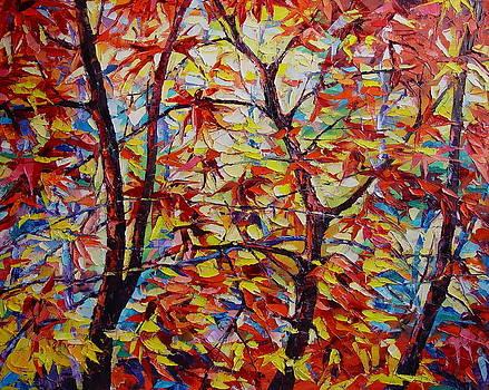 Young maples by Keren Gorzhaltsan