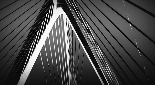 Marysue Ryan - Zakim