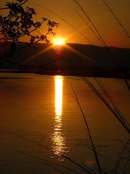 Zambezi Sunset by Barbara Allm