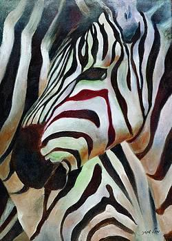 Zebra 2 by Michal Shimoni