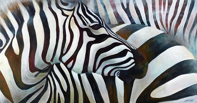 Zebra 3 by Michal Shimoni