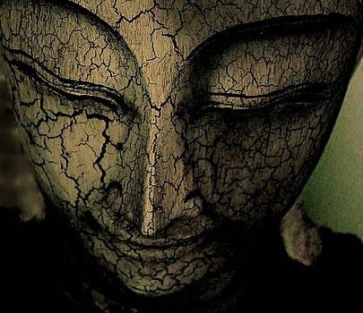 Zen by Stephen Chard