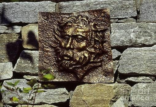 Zeus Portrait by Karen Lipeika