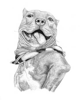 Zeus.. The look of Happiness by Deanna Maxwell