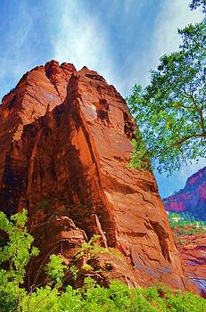 Zion Mountain by Paulette Hawkins