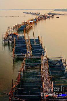 Native Fishery by Buchachon Petthanya