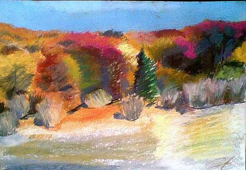 autumn in Izvoru mures by Vaidos Mihai