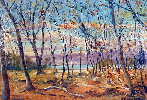 Autumn Leaves by Robert Harvey